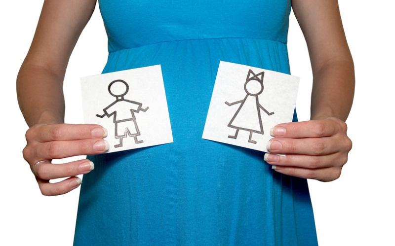 Пол ребенка по дате зачатия, как рассчитать время полового акта, чтобы получился желанный пол ребенка?