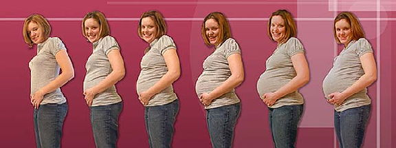 Когда начинается расти живот при беременности